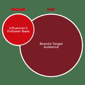 Influencer Marketing Audiences