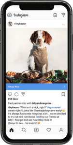 Facebook and Instagram Branded Content